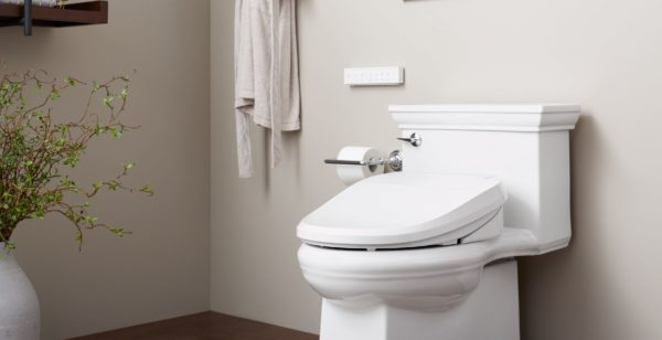 2020 bathroom trends: bidet seat