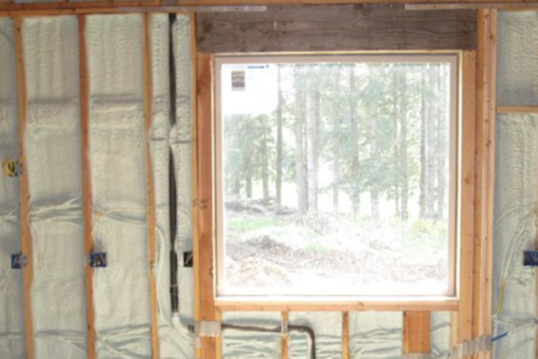 green home remodeling: insulation