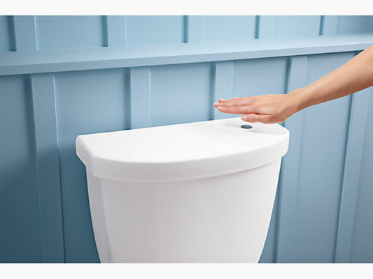 toilet types: no touch flush toilet